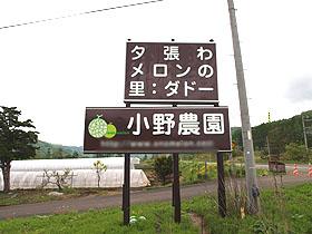 北海道 夕張 小野メロン 厳しく育てたメロンは甘さと香りがちがいます♪
