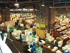北海道グルメ彩都 スタッフ日誌 札幌中央卸売市場での展示会視察