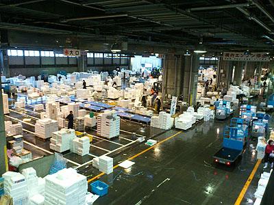北海道グルメ彩都 スタッフ日誌 札幌中央卸売市場