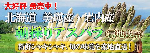 ご予約承り中! 美瑛産 ハウス栽培 露地栽培 アスパラ グリーンアスパラ ホワイトアスパラ