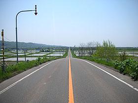 北海道グルメ彩都 スタッフ日誌 ご当地グルメ 上砂川 しいたけ