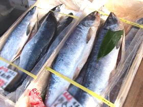 北海道の美味しいもの市場 食欲の秋 北海道グルメ通販 札幌市の市場